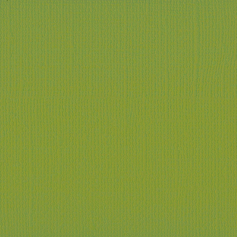 florence cardstock texture   fern