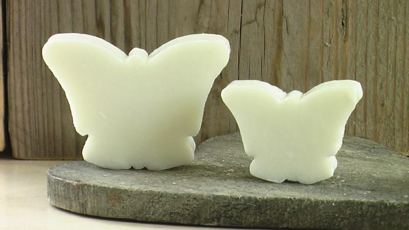 zeep vlinder wit
