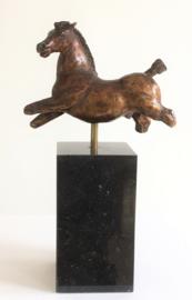 Paardentorso Equus
