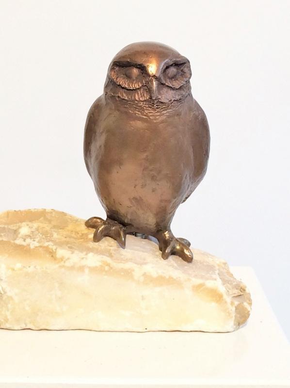 Steenuil op steen