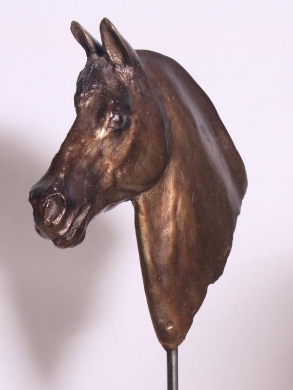 Paardenhoofd - bronsreliëf