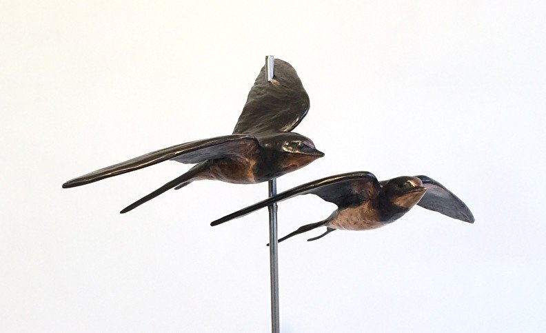 Youtube - zwaluwpaartje - geschenk bruidspaar