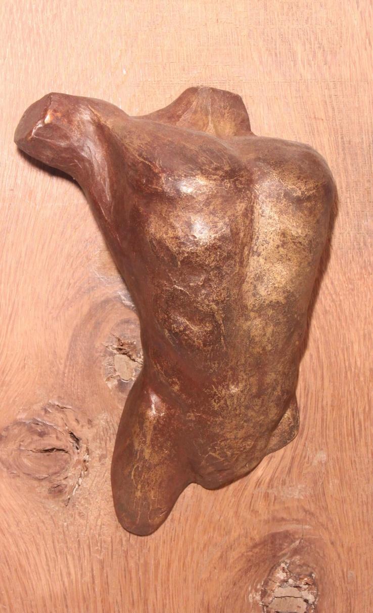 Mannentorso bronzen reliëf op eikenhout