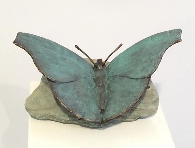 Bronzen vlinder, butterfly, papillon, schetterling, fjäril