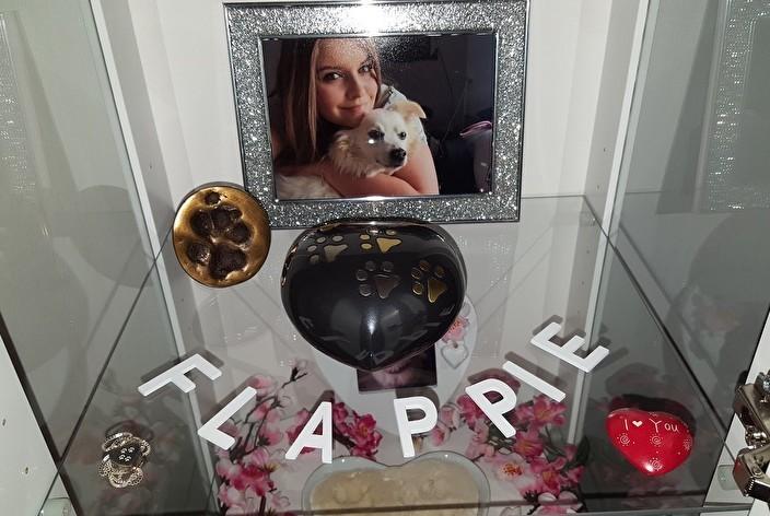 Aandenken aan hond Flappie