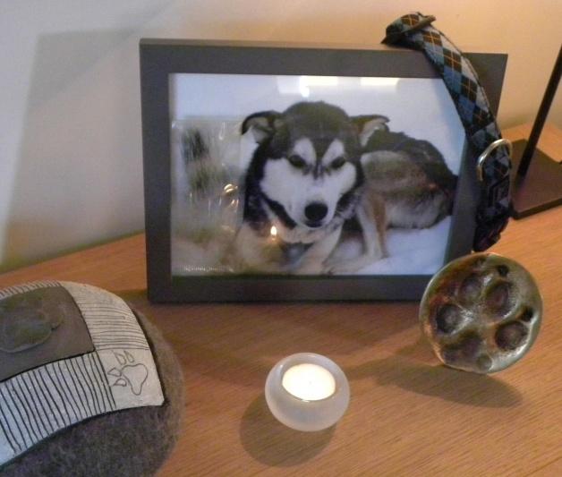 herinnering aan liefste hond Burab
