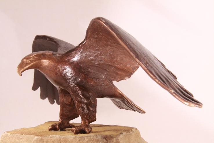 Zeearend bronzen beeld adelaar