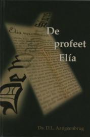 Aangeenbrug, Ds. D.L.-De profeet Elia
