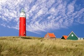 Stark Texel