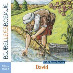 Klaasse den Haan, Ditteke-David (nieuw)