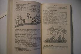 Le Nouveau Testament-Avec illustrations