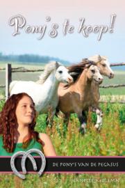 Molema, Jeanette-Pony's te koop! (nieuw)