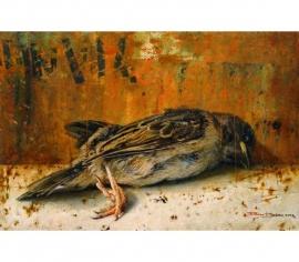 Stilleven met dood vogeltje