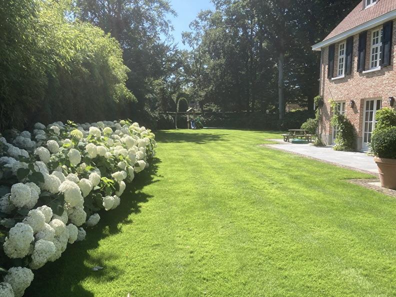 foto van mooi gazon met mooie tuin
