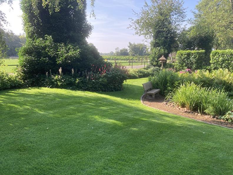 foto van mooie tuin met mooi gazon