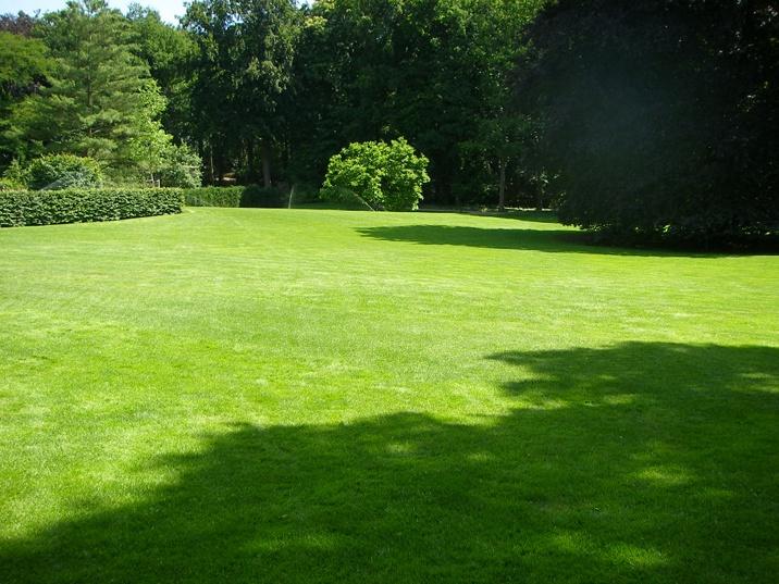 foto met enorme tuin met prachtig gazon