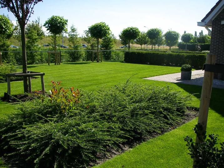 foto met donkergroen gras in banen gemaaid