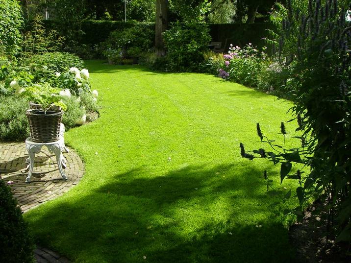 foto van een knusse tuin met een prachtig gazon