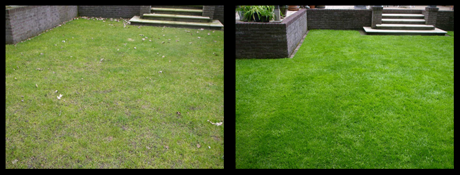 foto 01 voor en tijdens het gras onderhoud