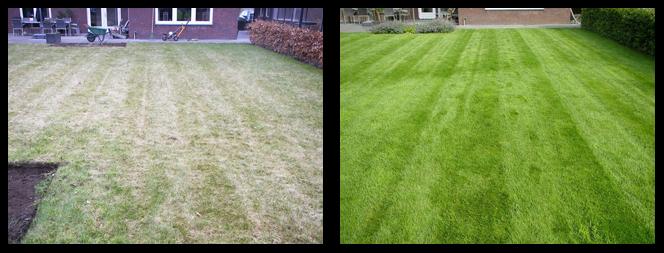 foto 05 voor en tijdens het gras onderhoud
