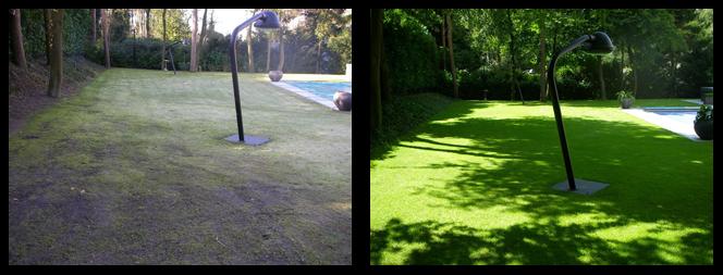 foto 07 voor en tijdens het gras onderhoud Almere