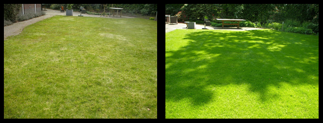 foto 13 voor en tijdens gras onderhoud