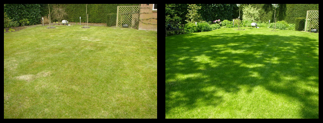 foto 14 voor en tijdens gras onderhoud