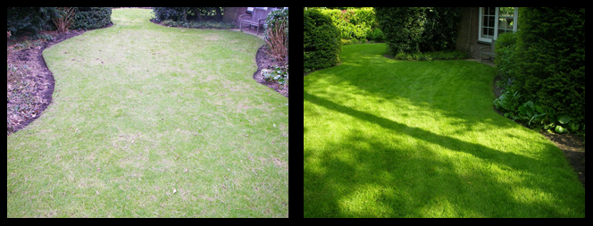 foto 17 voor en tijdens gras onderhoud