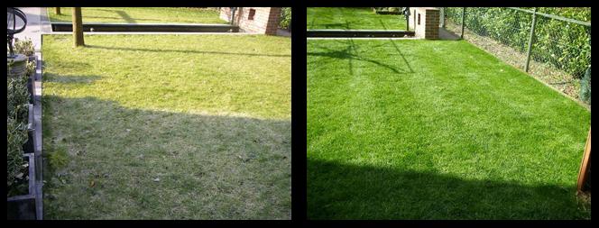 foto 21 voor en tijdens grasonderhoud Leiden