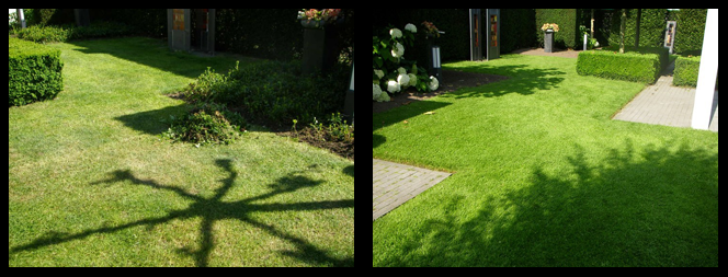 foto 22 voor en tijdens grasonderhoud Leeuwarden