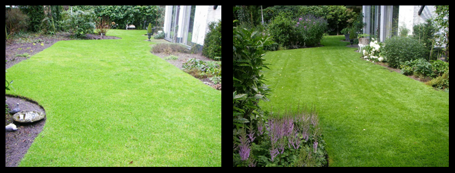 foto 24 voor en tijdens grasonderhoud Dordrecht