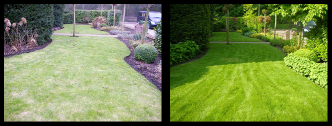 foto 25 voor en tijdens grasonderhoud Laren