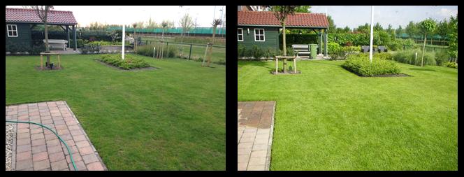 26 foto voor en tijdens grasonderhoud