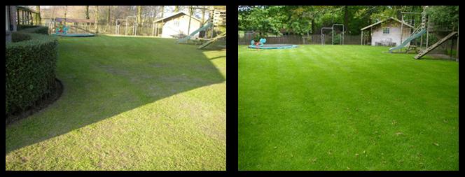 31 foto voor en tijdens grasonderhoud
