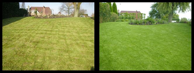 32 foto voor en tijdens grasonderhoud