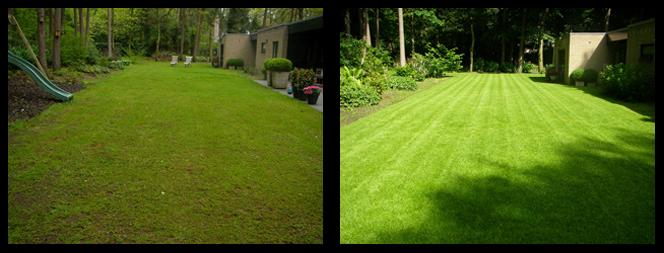 34 foto voor en tijdens grasonderhoud