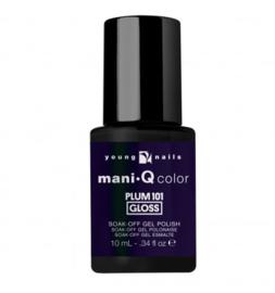 ManiQ Plum 101 10 ML