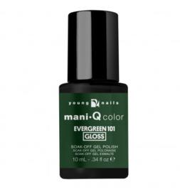 ManiQ Evergreen 101