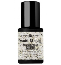 ManiQ Color Silver Spring 10 ml