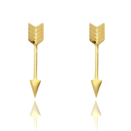 Stainless steel oorknopjes | goud & pijltjes.