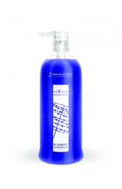 Blueberry Shampoo 250ml