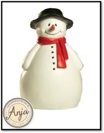 5604 Sneeuwpop
