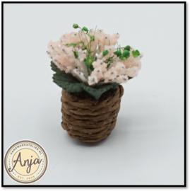 Plant roze in pot D1278ZR