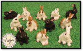 DA016 konijnen