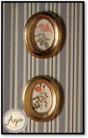 3628 Twee ovale schilderijtjes