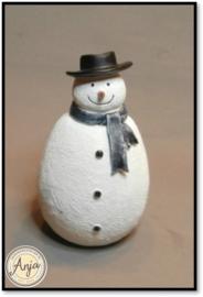 DP323 Sneeuwpop