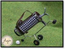 GA291 Golfkar met tas