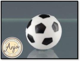 73009 Voetbal