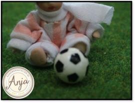 TA98 Voetbal