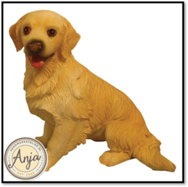DA002 Golden Retriever